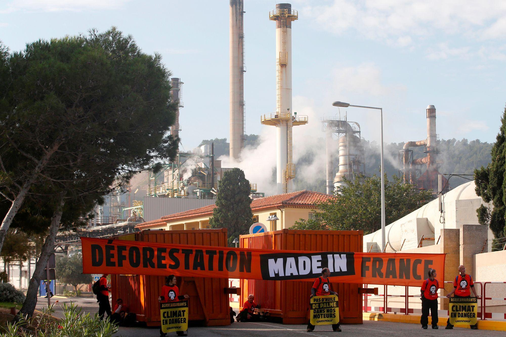 Biocarburants : les députés sauvent l'huile de palme