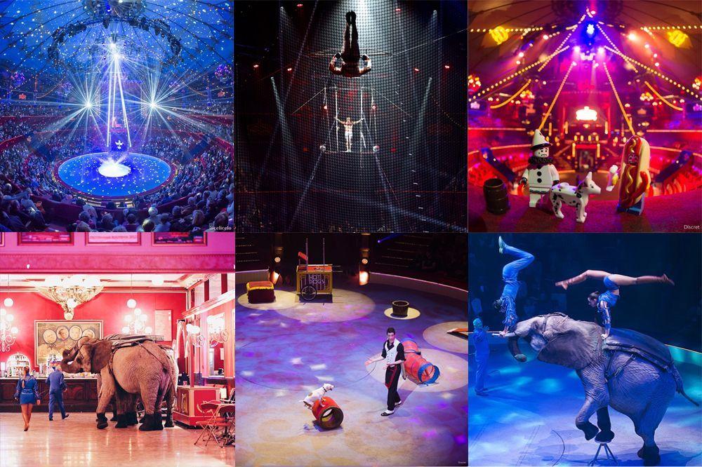 Rencontre Instagram Une journée au Cirque d'Hiver Bouglione