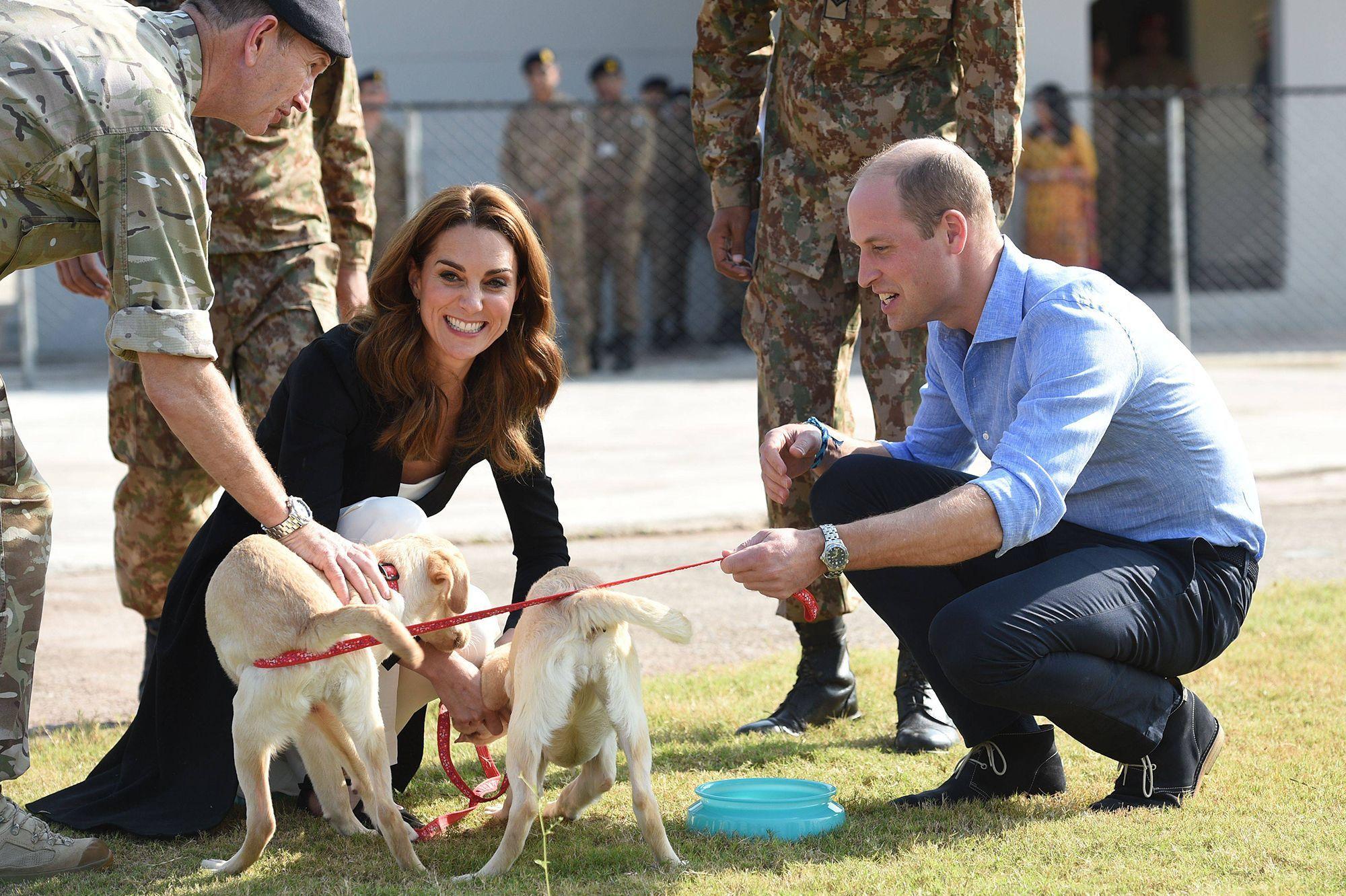 Kate et William sous le charme de chiens militaires à Islamabad