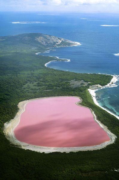 Pink-Lake-Australie