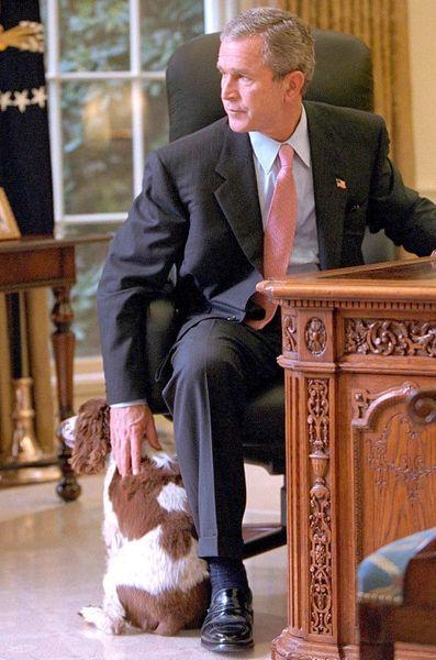 George W Bush octobre 2001