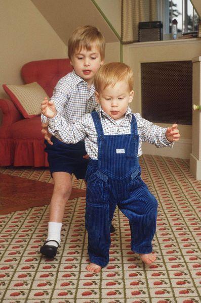 Le prince William et le prince Harry
