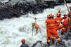 Chine : sous les décombres, des chiens et des hommes