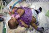 Un grand espoir pour les petites siamoises