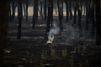 Espagne : un parc naturel en proie aux flammes