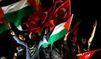Flotille: Les Turcs accueillis en héros chez eux