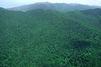 Guadeloupe : des scouts égarés retrouvés sains et saufs