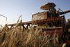 Agriculture : comment le Grenelle a échoué