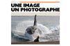 L'orque à l'attaque, par Sylvain Cordier