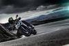 Kawasaki Z1000 : fauve qui peut !