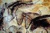 La grotte Chauvet au patrimoine de l'humanité