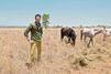 """""""Safari go!"""" : avec Vincent Cerutti, les enfants vont manger du lion"""