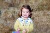Princesse Charlotte, une nouvelle photo pour son deuxième anniversaire