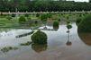 Les conseils d'un paysagiste : Comment sauver son jardin inondé ?