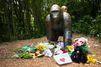 Gorille tué dans un zoo: enquête sur la famille du garçonnet