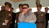 Corée du Nord: Une attaque virale contre le sud ?