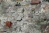 Séisme en Italie: Dans les ruines d'Amatrice