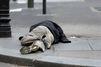 Hommage à Paris aux centaines de SDF morts en 2016