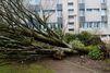 La tempête Zeus fait deux morts et de nombreux dégâts