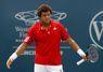 Miami (ATP): Tsonga croque Ferrero
