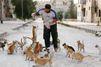 Malgré la guerre, un homme reste à Alep pour nourrir les chats