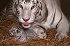 Une semaine chez les animaux du 19 Mai 2014 au 25 Mai 2014