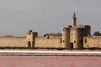 Aigues-Mortes, de Saint Louis à la Réforme, 500 ans d'Histoire