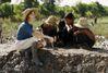 Isabelle Huppert : barrage contre la banalité