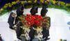 Michael Jackson, sous les roses, déjà des épines