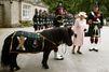 Elizabeth II s'inquiète de la santé de Cruachan III