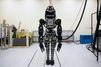 Un zoo de robots pour Google