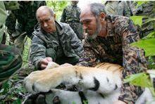 La tigresse de Poutine menace les poulets chinois