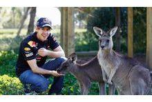 Sebastian Vettel : le jeune roi du circuit