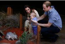Baby George charme les fillettes au bac à sable