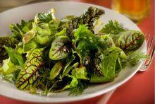 Salades, l'empire des sauces