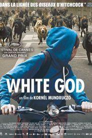 """White God"": Royal canin"