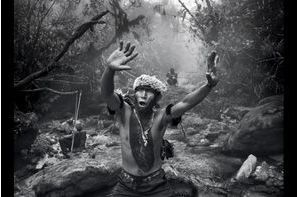 Le combat des Yanomami