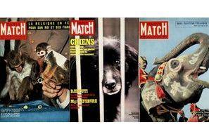 Match et les animaux, une histoire ancienne