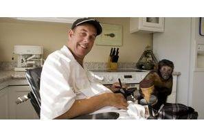 Quand l'homme dépend du singe