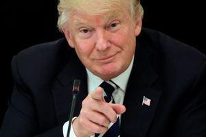 Donald Trump à la Maison Blanche, le 8 juin 2017.