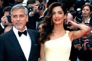 Amal et George Clooney en mai 2016.