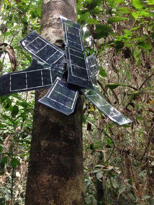 Une antenne au Cameroun.