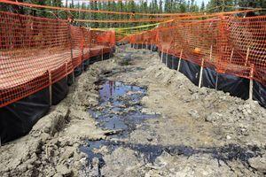 Dans l'Alberta, toujours, du bitume remonte à la surface, menaçant de contaminer la faune et la flore, après l'injection de vapeur.