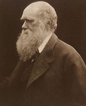 Charles Darwin par Julia Margaret Cameron, 1868