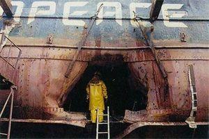 Le trou béant dans la coque du navire amiral de Greenpeace causé par une mine magnétique.