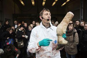 Le vétérinaire explique chaque étape de l'autopsie.