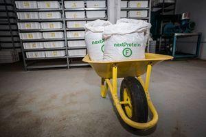 """Premier produit commercialisé par nextProtein, ce fertilisant """"bio"""""""