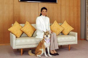 La princesse Masako et son chien Youri à Tokyo, le 28 novembre 2015