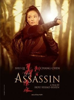 "L'affiche de ""The Assassin""."