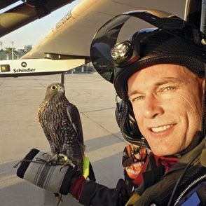 Bertrand Piccard retrouve un habitué du désert, Zehri, le faucon pèlerin.